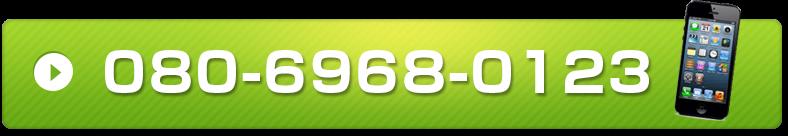 080-9119-2010